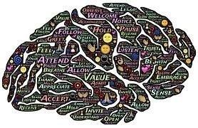 Ortopedia Mentale
