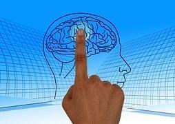 sapere della mente