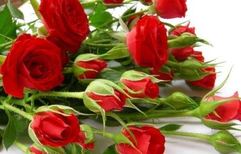 Ezio Fioraio compone mazzi, bouquet