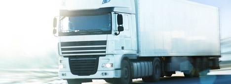 Camion e automezzi