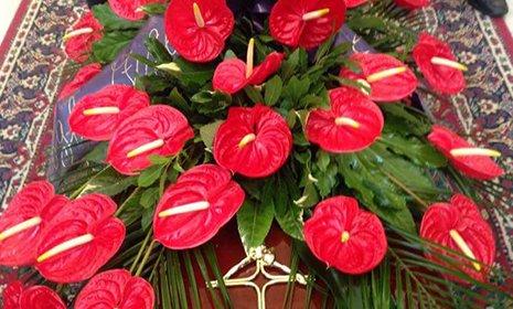 Una composizione di fiori rossi