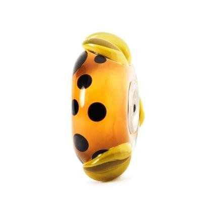 baccello arancione
