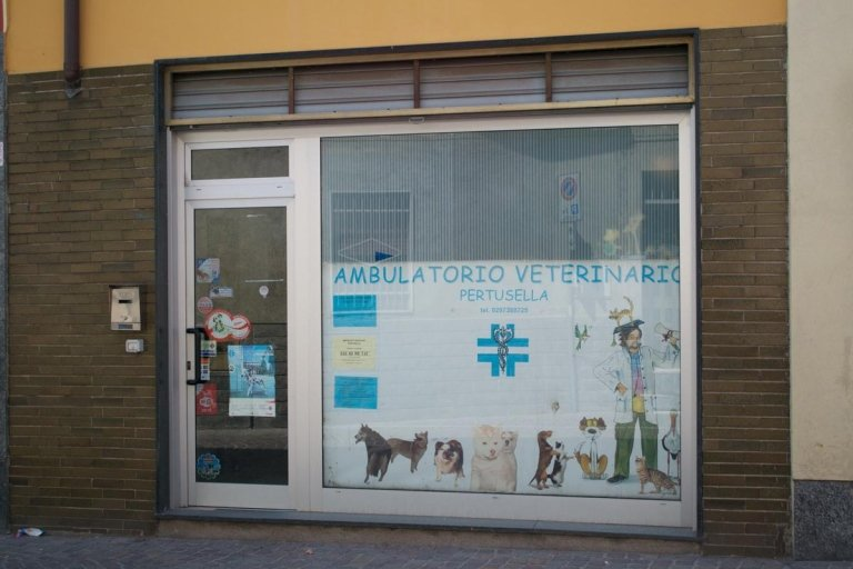 ambulatorio veterinario Pertusella