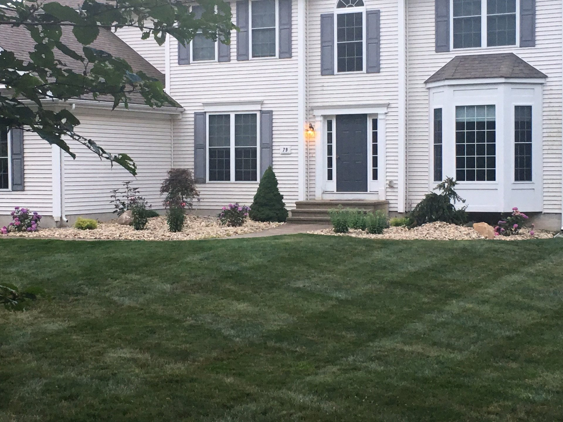 Front Lawn of House, Landscaping