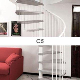 c5-pianta-tonda