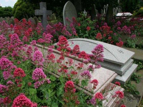 tumulazioni Onoranze funebri Costanzo