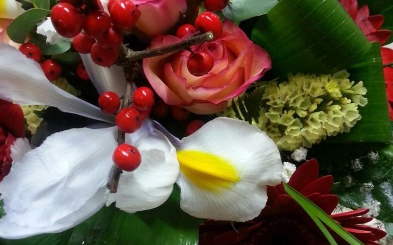 idea regalo fiorista
