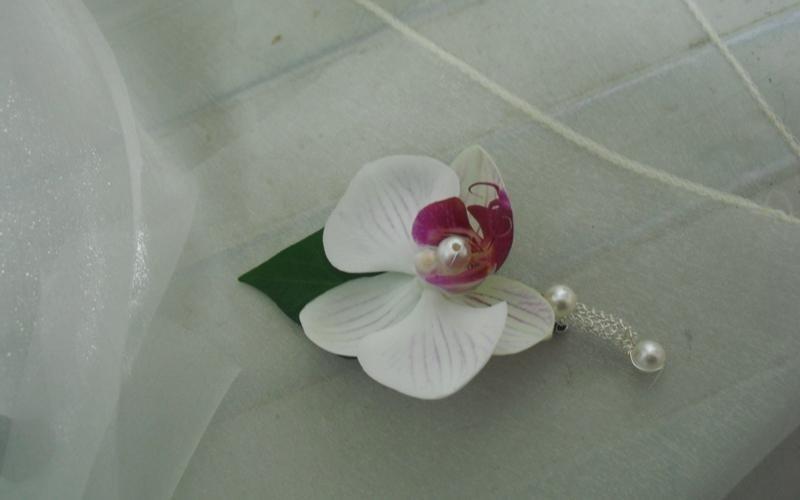 fiore all