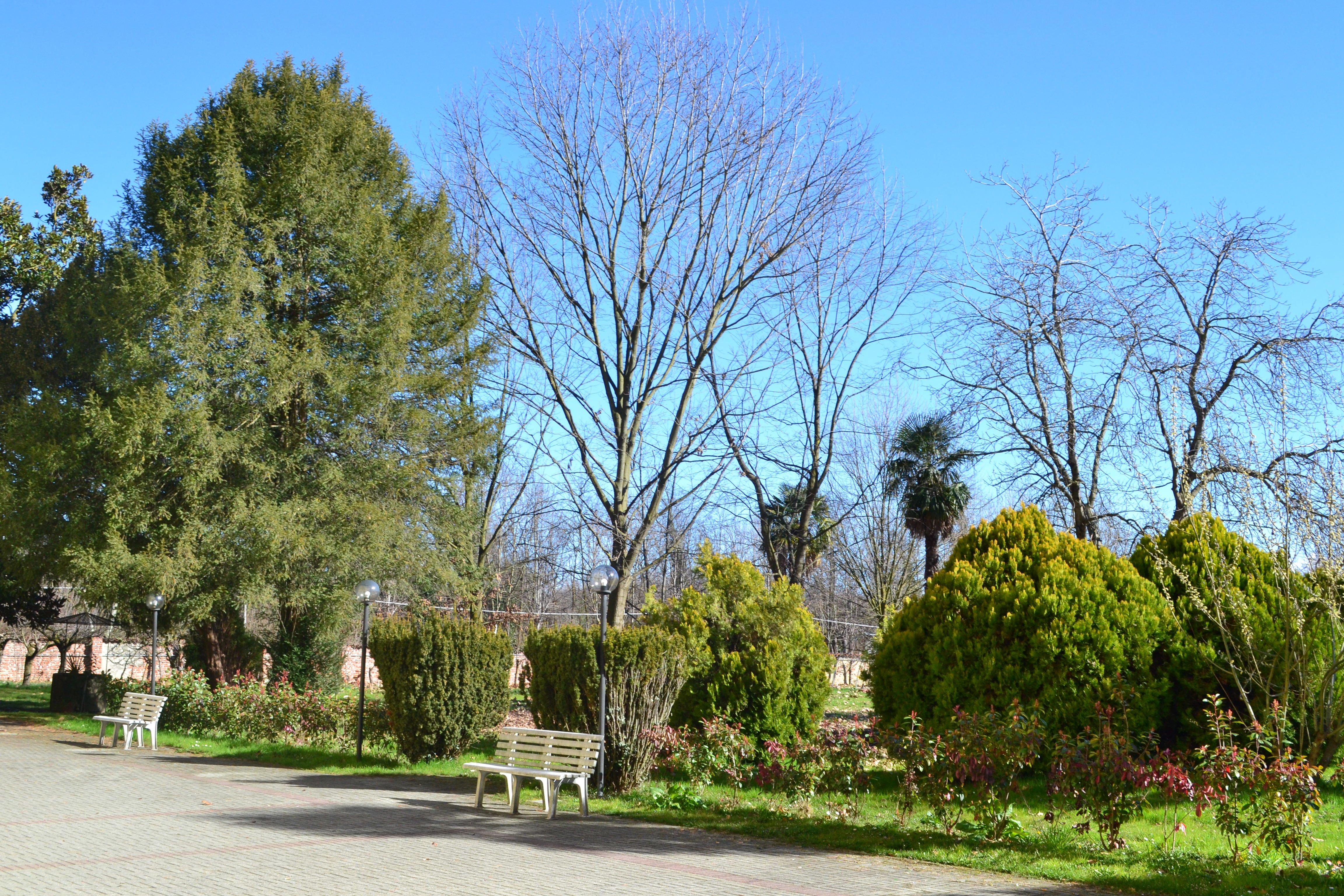 veduta esterna con alberi e piante