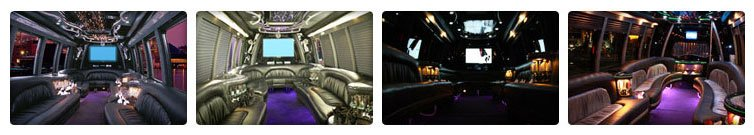 party bus for bachelor party