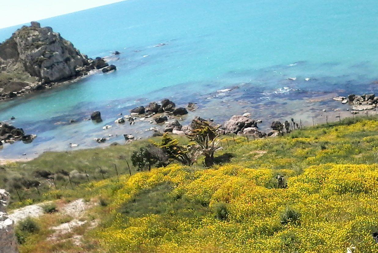 paesaggio marino visto da una collina