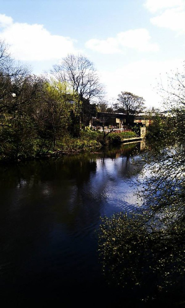 Our beer garden from down the river