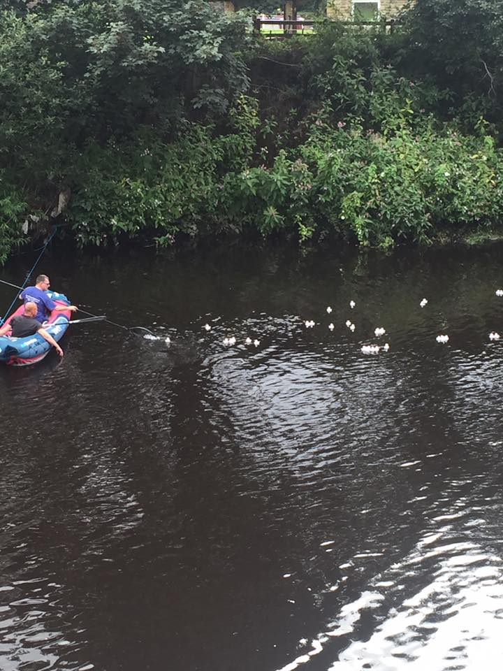 Charity Duck Race in aid of Kirkwood Hospice