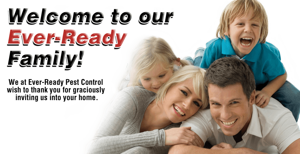 Ever Ready Pest Control, House Spraying, Family, Safe