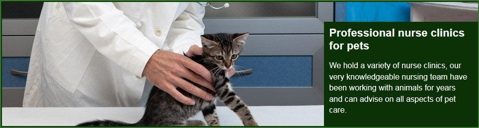 For reliable, caring vets in Chessington call 020 8974 1197