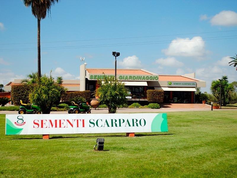 Manutenzione spazi verdi Latina Sementi Scarparo