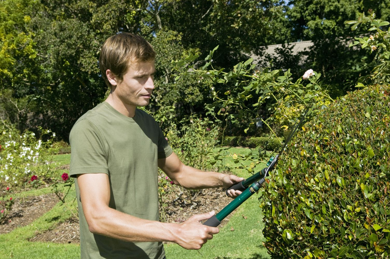 A professional landscaper at work in Warwick, NY