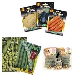 vendita sementi
