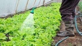 Articoli per l'irrigazione