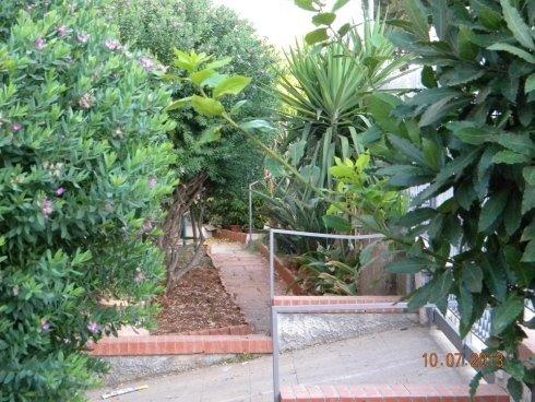 sentiero in un giardino