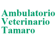 http://www.ambulatoriotamarogiuliana.com/