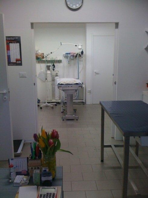 Ambulatorio Veterinario Tamaro