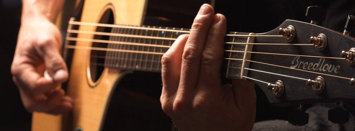 Breedlove gitaren Antwerpen