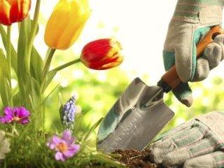 attrezzi per floricoltura