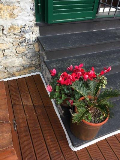 un vaso di fiori fucsia su dei gradini