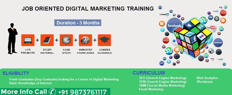 Digital marketing Training in Paschim Vihar