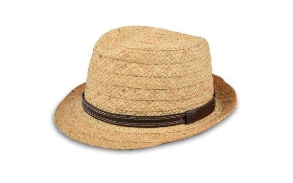 summer hat panama