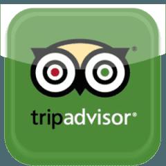www.tripadvisor.it/Hotel_Review-g1020248-d1390161-Reviews-Hotel_Ristorante_Calla_2-Policoro_Province_of_Matera_Basilicata.html