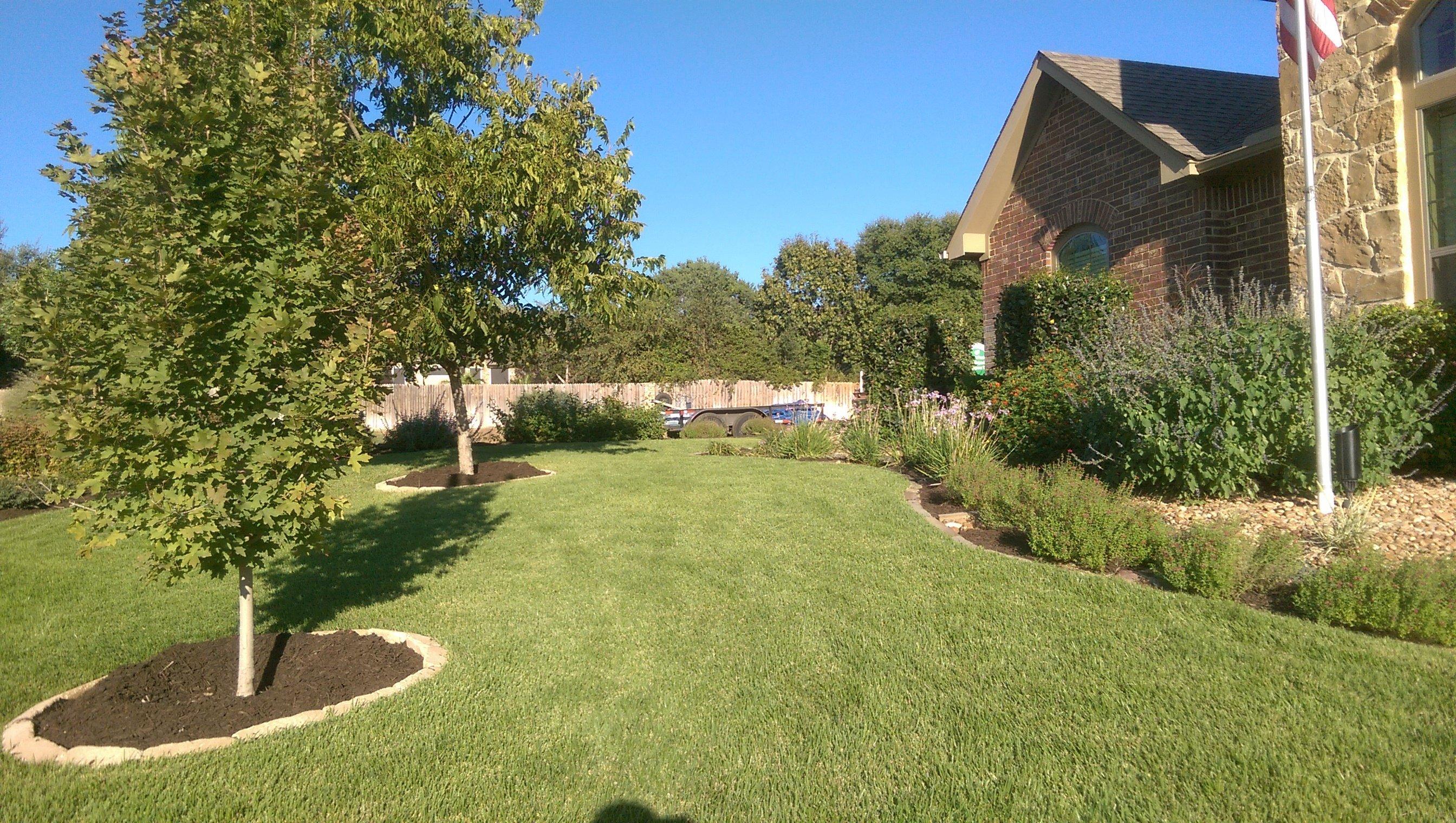 Lawn Care & Pet Friendly Lawn Fertilizer San Antonio, TX