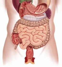 Patologie digestive