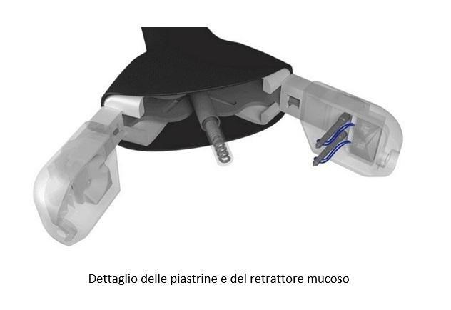 Dettaglio delle piastrine e del retrattore mucoso