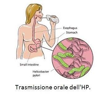 Trasmissione orale dell'HP