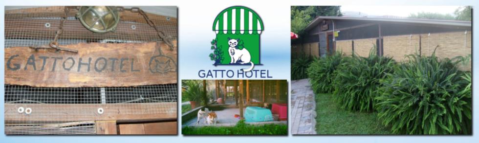 GATTO HOTEL
