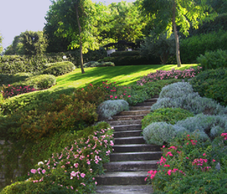 creazione parchi e giardini