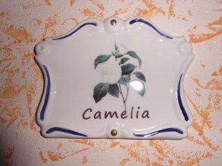 camera camelia