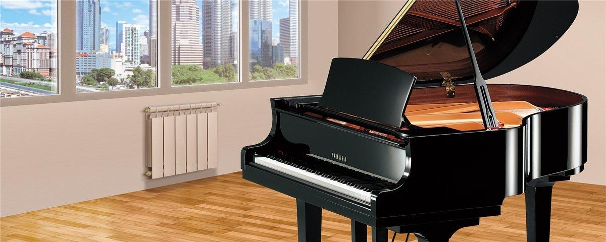 C2 M Yamaha: Sfruttando le nuove soluzioni per risonanza e controllo espressivo, i pianoforti a coda della serie C sono la prova del costante impegno di Yamaha nel curare i dettagli. I molti modelli della serie C possono soddisfare le esigenze di qualsiasi musicista.