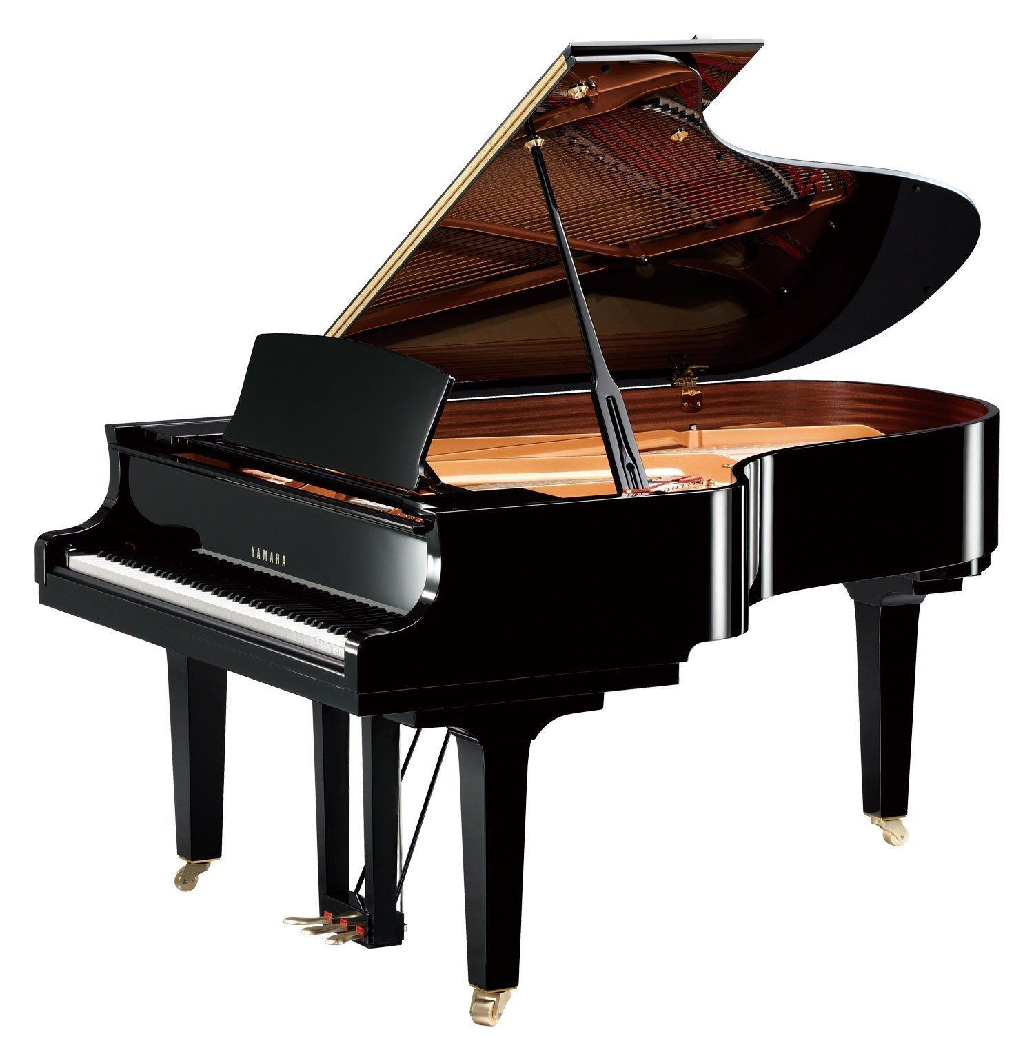C5X yamaha Il suono di un pianoforte ha una facilità espressiva senza limiti e si modifica secondo la melodia e la sovrapposizione delle note creando splendide armonie. I pianoforti della serie CX son pianoforti a coda di alto livello, caratterizzati da potenza e raffinatezza.