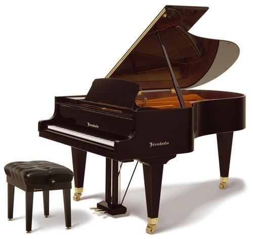Bösendorfer Modello 200 Per gli amanti della musica e Professionals- The Classic