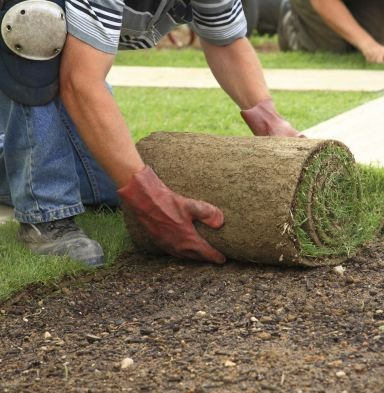 perth turf supplies instant turfing