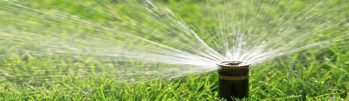 perth turf supplies watering