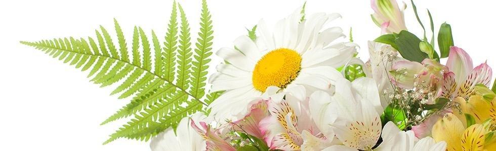 Addobbi floreali Petrosino