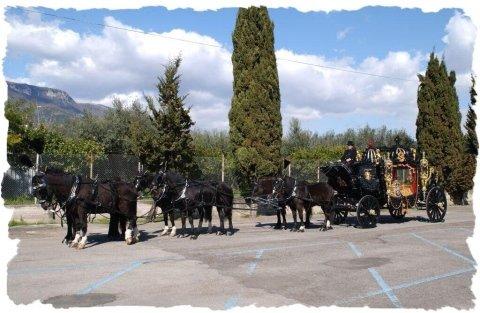carro con cavalli