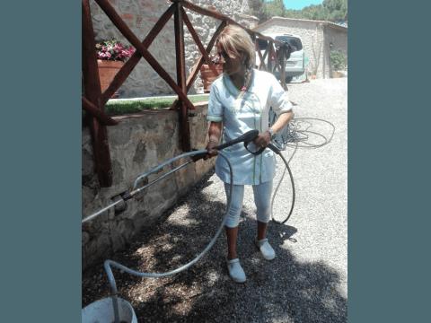 Pulizia Mattoni e Pietre - Impresa di Pulizie I Delfini Grosseto (GR)