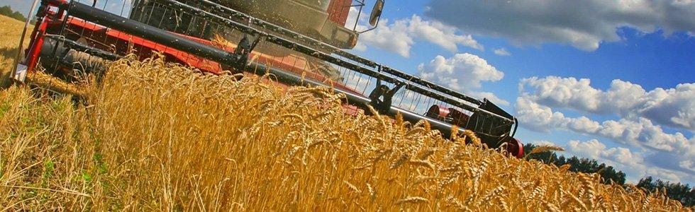 riparazione impianti stoccaggio cereali