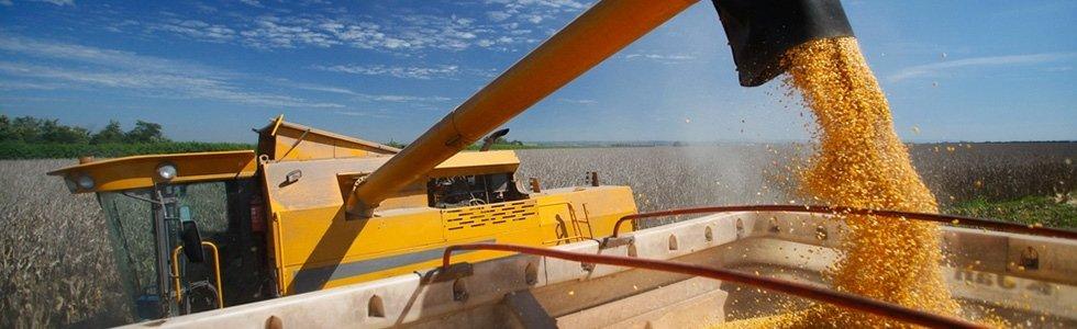 manutenzione impianti cereali