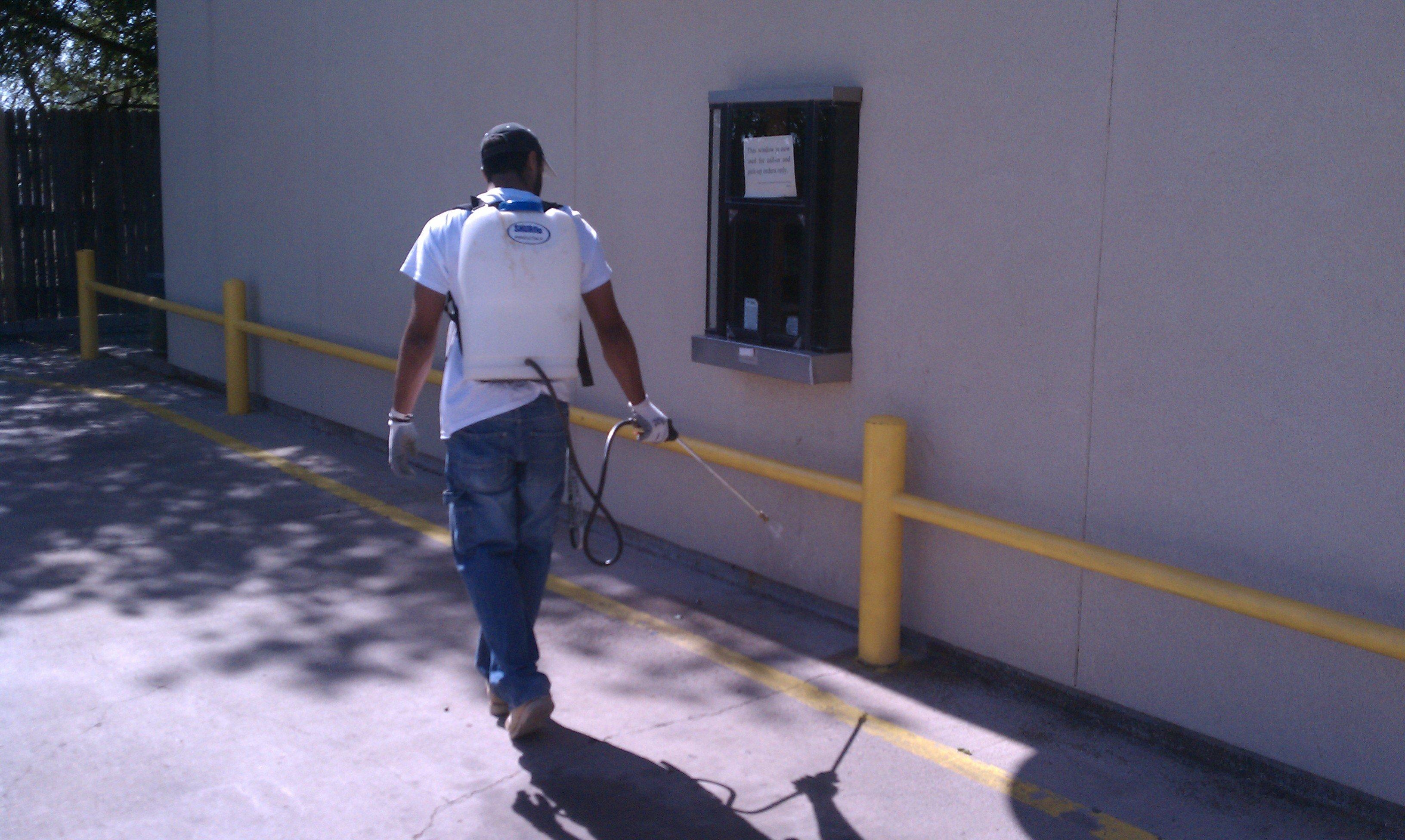 Pest Control Colorado City, TX
